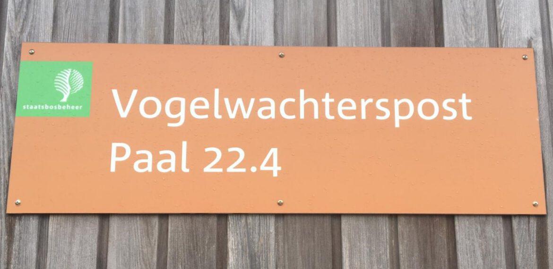 Boschplaat Berichten